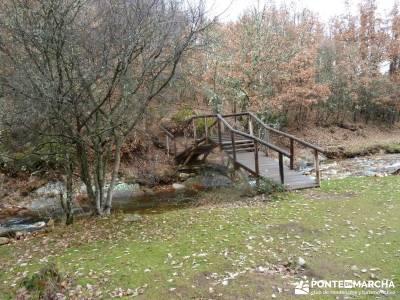 Molino Río Jarama-La Hiruela; viajes en enero valle de jerte cerezos en flor concierto de las velas